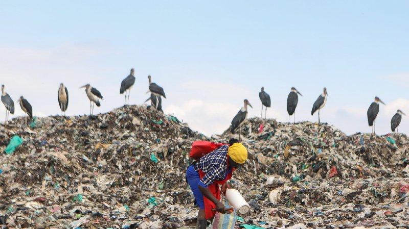 Environnement: pour Greenpeace, les solutions alternatives au plastique augmentent la pollution