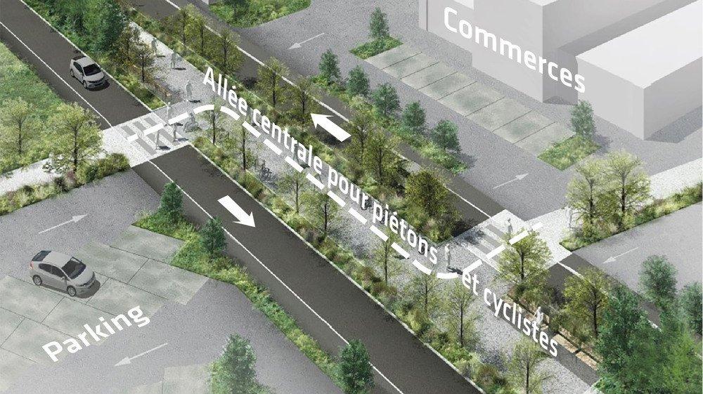 Le projet, qui prévoit une vitesse réduite et une bande centrale dédiée à la mobilité douce, ne convainc pas les commerçants pour le moment.