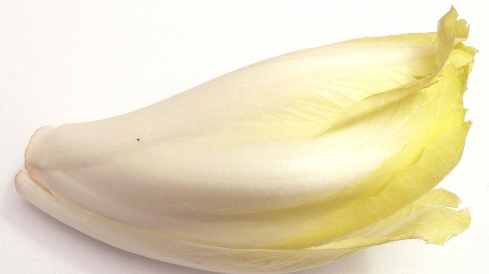 Pour bien conserver vos endives et éviter que ses feuilles verdissent, placez-les toujours à l'abri de la lumière. Au réfrigérateur, elles se conservent 4 à 5 jours dans le bac à légumes.