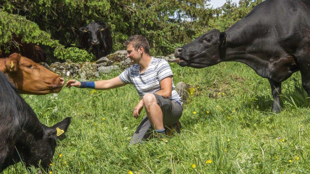 Vincent Roten - ici photographié en été 2017 sur son alpage de Crettaz-Ley - croit en l'avenir d'une Interprofession du bétail et se dit prêt à assumer de nouvelles responsabilités si cette entité voit le jour l'an prochain.
