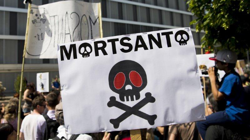 Monsanto est soumise à une pression de plus en plus écrasante à l'échelle mondiale. Des manifestations dénoncent partout les dérives du groupe d'industrie chimique. (illustration)