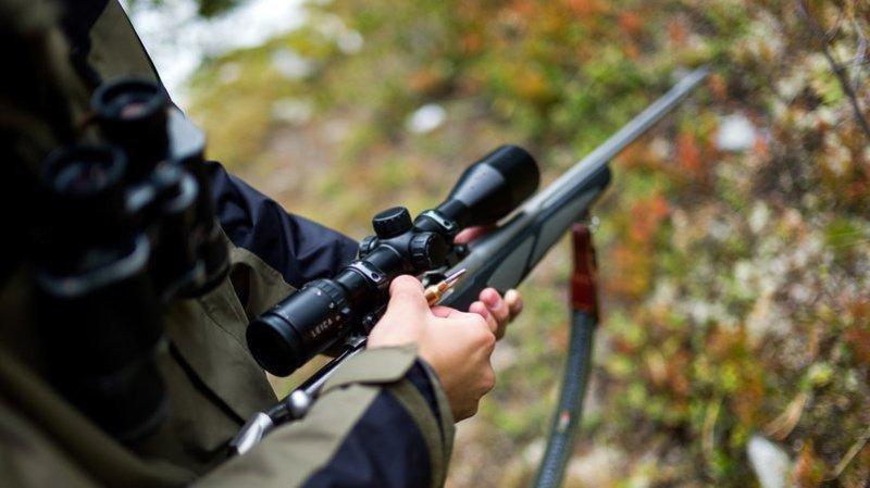 Référendum contre la loi sur la chasse: plus de 70'000 signatures en moins de 2 mois, les Suisses voteront