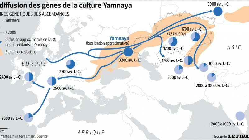 L'ADN raconte les migrations européennes