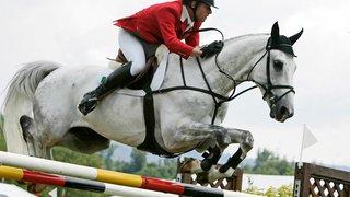 Equitation: Paul Estermann, membre de l'équipe suisse, condamné pour mauvais traitement sur ses chevaux