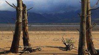 Famine: 45 millions de personnes menacées d'insécurité alimentaire en Afrique Australe