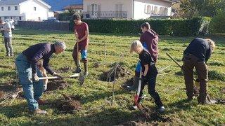 A Saillon, ils plantent des arbres pour la planète
