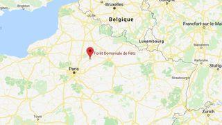 France: femme enceinte tuée par des chiens dans une forêt