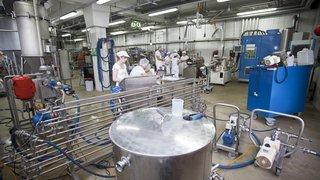 Remplacer la viande par des protéines? La HES-SO Valais dans le coup