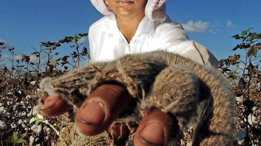 Un pesticide suisse  pollue le Brésil
