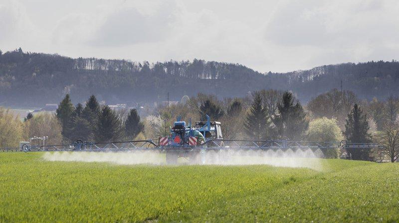 Pesticides, Mercosur, Politique agricole 22+… les paysans sont au cœur de décisions importantes en 2020