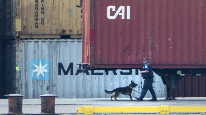 Uruguay: saisie record de cocaïne dans le port de Montevideo
