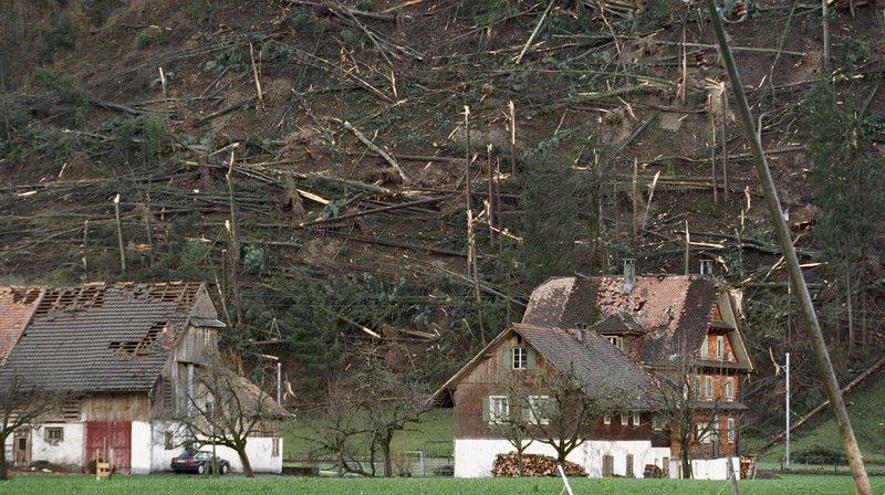 20 ans après Lothar: la forêt désormais plus résistante face aux éléments naturels