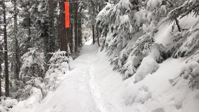 La neige s'est installée sur le parcours.