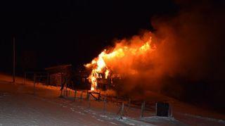 Appenzell: 200 porcs périssent dans l'incendie d'une écurie
