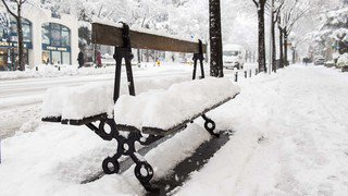 NEIGE SION 7