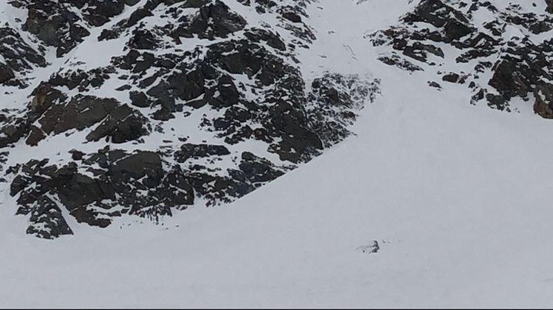 L'avalanche s'est déclenchée dans un secteur du Rossboden à une altitude de 2600 mètres.