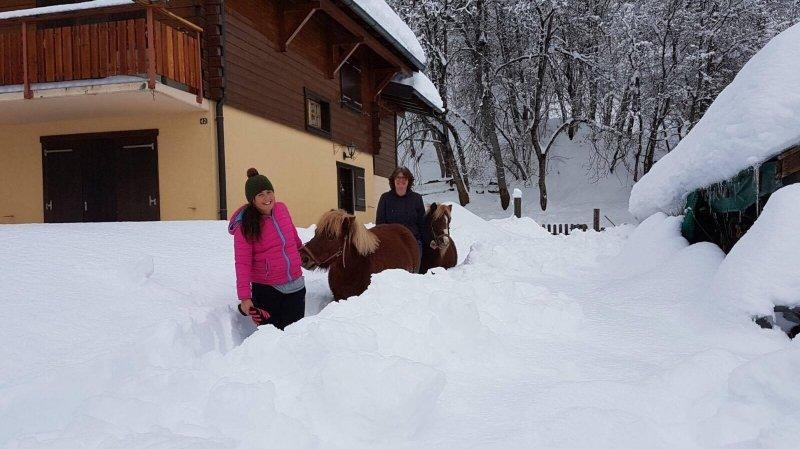 A Ovronnaz, les poneys ne craignent pas la neige et accueillent les enfants pour des sorties chaque vendredi.