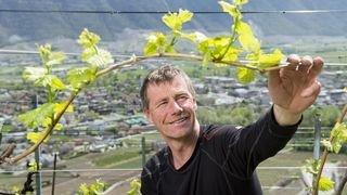 Valais: les vigneron·ne·s bios surfent sur les réseaux sociaux