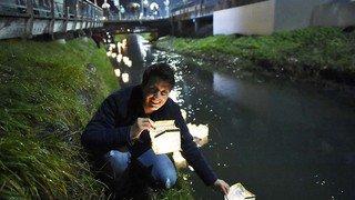 Fully: Le Canal enchanté en images