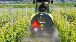 Le Valais sort grand gagnant de la refonte de la recherche agronomique suisse après avoir failli tout perdre