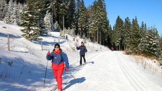 Les sports d'hiver avec Pro Senectute pour garder la forme et faire des rencontres