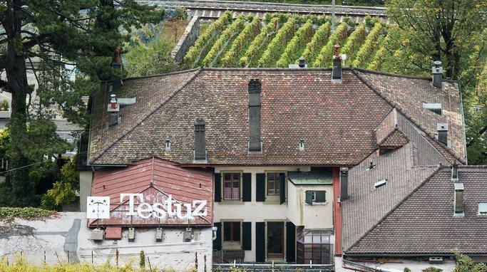 Patrimoine: un projet immobilier menace un vignoble unique au coeur du site de Lavaux (VD)