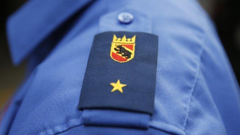 Berne: un bûcheron de 42 ans tué par la chute d'un arbre