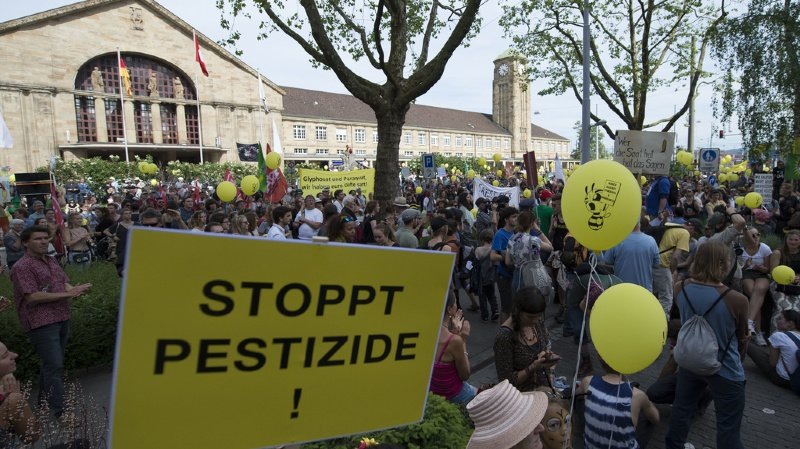 Le Conseil des Etats refuse de forcer la main au gouvernement pour interdire le glyphosate.
