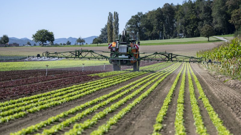 Le montant actuel est trop bas pour pousser à la préservation des terres cultivables.