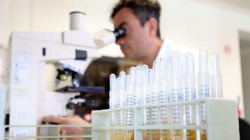 Coronavirus: où en est la recherche mondiale sur les traitements et vaccins?