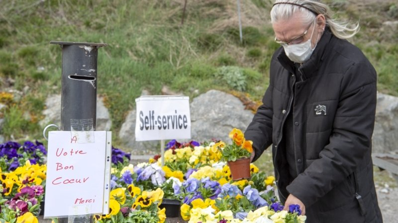 Coronavirus: on peut encore cultiver son jardin