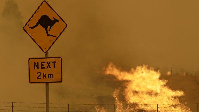 Quelque 15 millions d'Australiens ont été affectés de manière indirecte par ces feux, en raison de la fumée toxique qu'ils ont dégagée ou des projets de vacances qu'ils ont dû changer (archives).