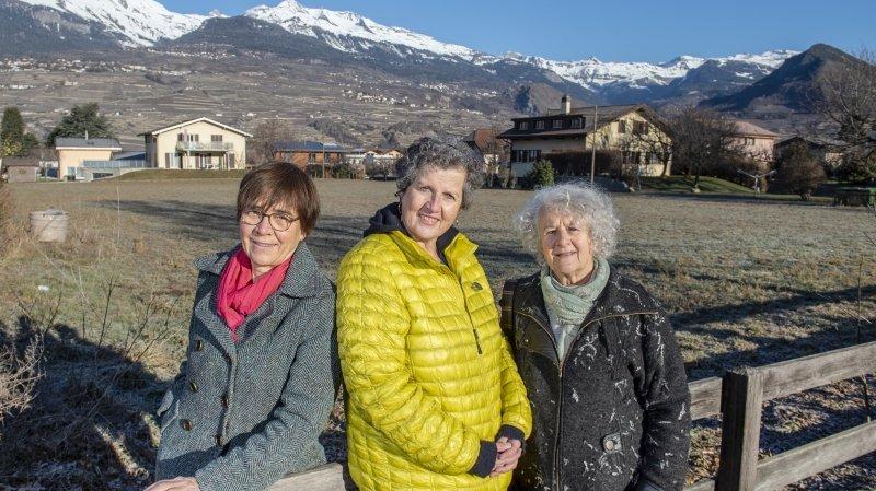 Trois membres d'Ecoologis posent devant le terrain de 4000 mètres carrés au cœur de Bramois qui pourrait accueillir le premier immeuble participatif du canton.