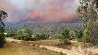 Australie: les incendies ont détruit 5,8 millions d'hectares de forêts