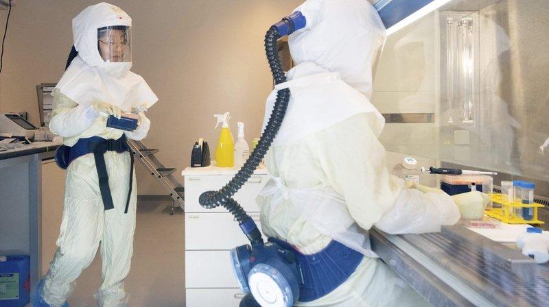 Coronavirus: une dizaine de laboratoires suisses travaillent sur un vaccin