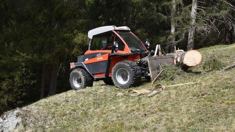 Un agriculteur de 56 a été coincé par le tronc d'un  sapin près de Klosters (GR). Il est décédé sur place.
