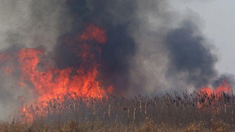 Pologne: de gros incendies ravagent le plus grand parc national du pays