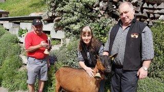 A Troistorrents, une chèvre fait la fierté de son éleveur