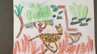 Concours de dessins 2020: les animaux de la forêt