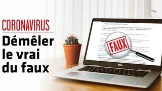 Coronavirus – Fake news: non, les moustiques ne sont pas un vecteur de transmission du virus