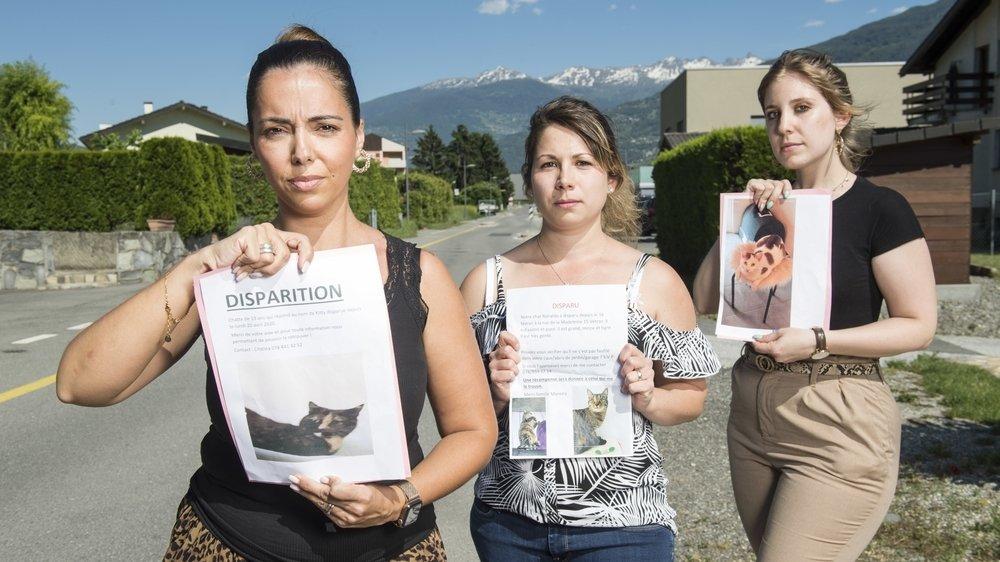 De g. à d.: Cristina Martins, Stéphanie Moreira et Carine Sewer sont sans nouvelles de leur chat depuis plusieurs semaines.