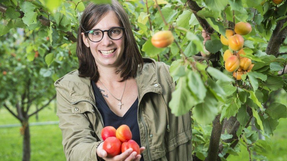 Anne Constantin, responsable des cultures fruitières de la Jardinerie Constantin, a converti cette année 2,5 hectares d'abricotiers en bio. Contre la moniliose, un traitement à l'huile d'origan, aux algues et au cuivre a été appliqué.