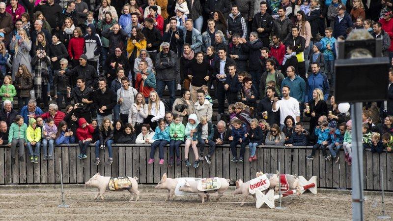 Coronavirus: la foire agricole Olma 2020 est annulée