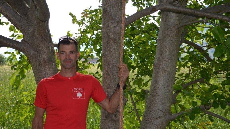 Gildas Houdou, arboriste et expert arboricole.