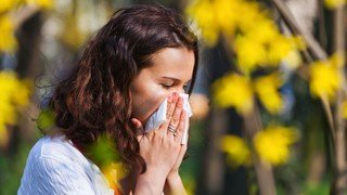 Valais: un printemps d'enfer pour des milliers d'allergiques