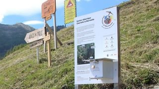 Un nouveau sentier pour Charlotte la Marmotte à Bruson