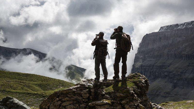 Votations fédérales: une majorité de citoyens rejetterait l'initiative de limitation et la loi sur la chasse
