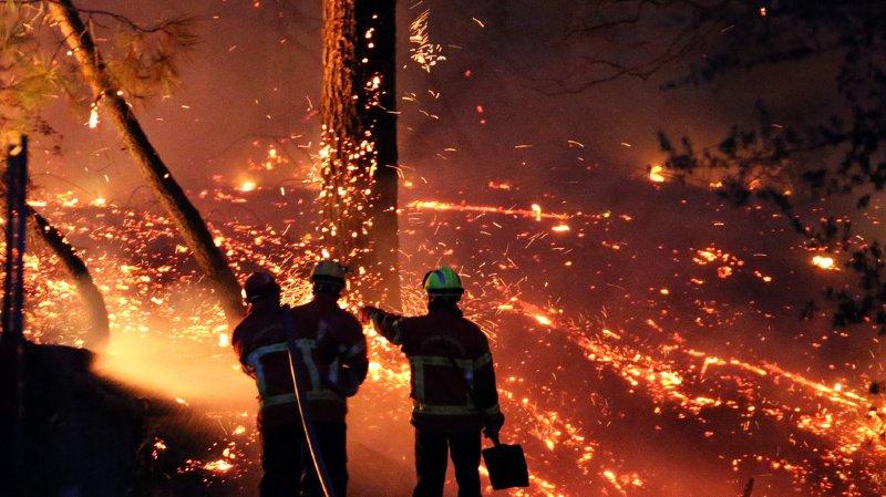 Le feu de forêt qui a ravagé 167 hectares de végétation dans la région de Bayonne le 30 juillet dernier avait mobilisé d'importants moyens.