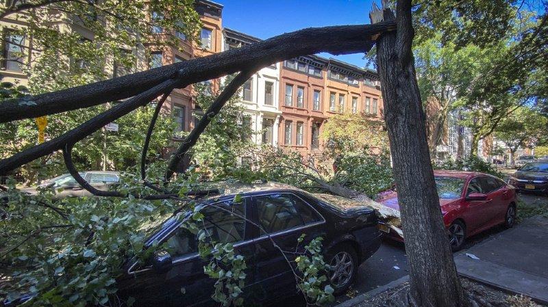 La tempête Isaias a déjà fait deux morts et passablement de dégâts sur son passage le long de la côte Est des Etats-Unis, comme ici dans le quartier de Brooklyn, à New York.