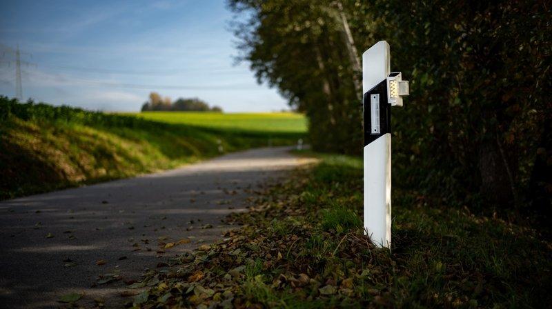 Le système avertit l'automobiliste dès qu'un animal s'approche de la route.